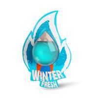 Ароматизатор AVS WDM-008 Fire Fresh (Winter Fresh/Зимняя свежесть) (мембранный)
